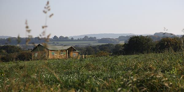 Lantern & Larks Glamping tent in green field with rolling hills