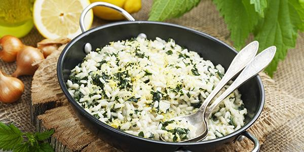 A serving of food made with nettles