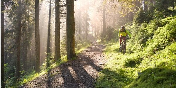Mountain bike trails are a great way to explore Lancashire