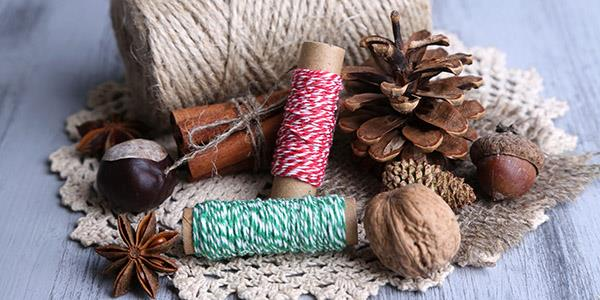 Thread, conkers and fir cone