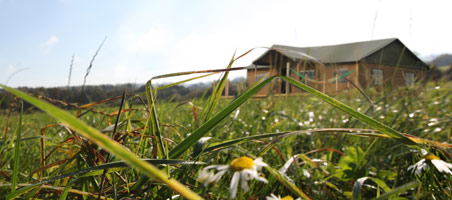 15% discount for glamping bookings during low season