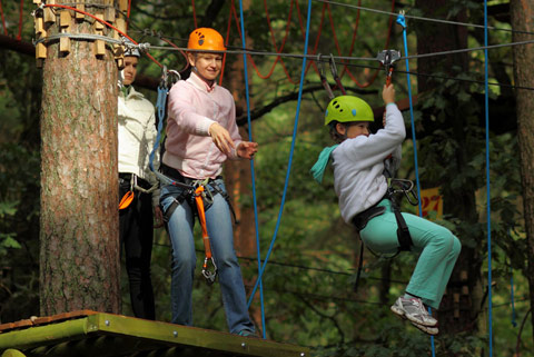 Go Ape in Haldon Forest Park